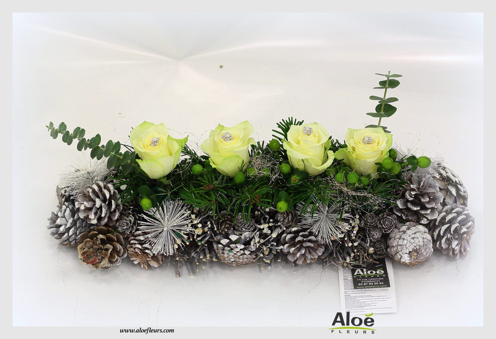 bouquet de fleurs noel alo dec201536 aloe fleurs. Black Bedroom Furniture Sets. Home Design Ideas