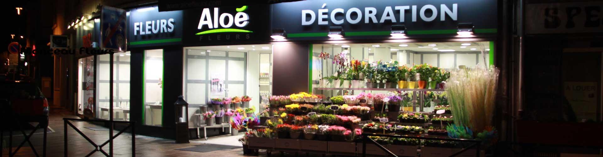 aloé-fleurs-forbach-by-night