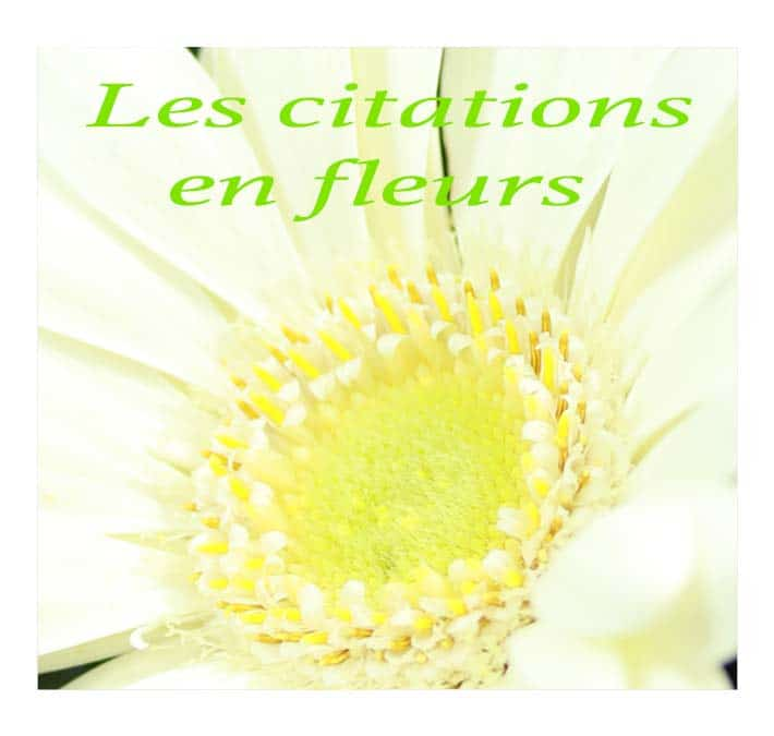 Citations de fleurs en fleurs