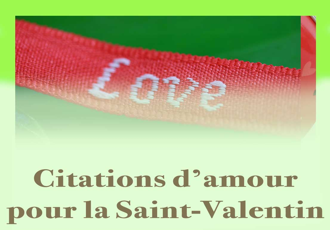 Bouton Saint Valentin Citations