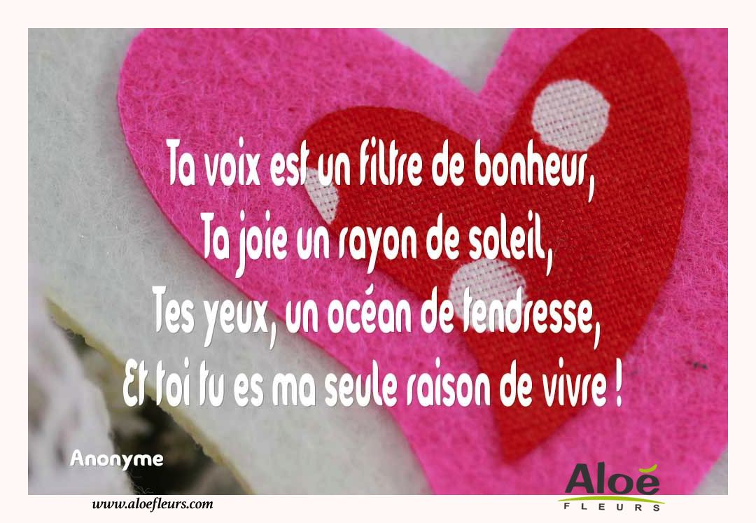 Image d amour saint valentin fashion designs for Filtre d amour qui marche