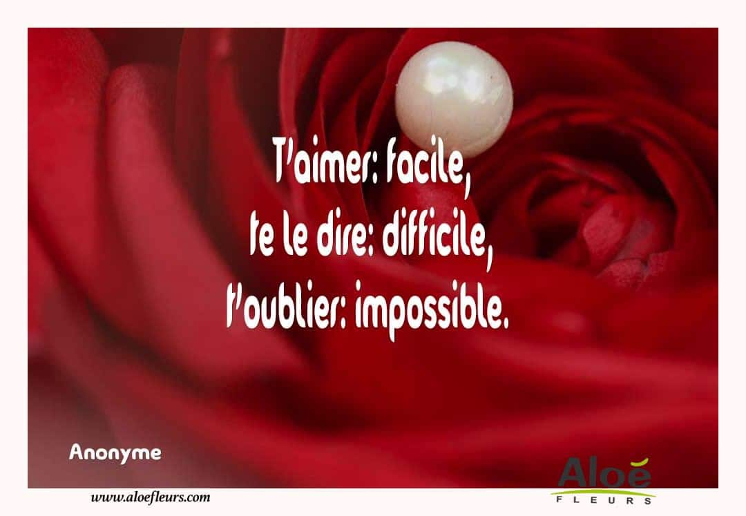 Citations D'amour Et Saint Valentin  T'aimer  Facile, Te Le Dire  Difficile, T'oublier  Impossible.