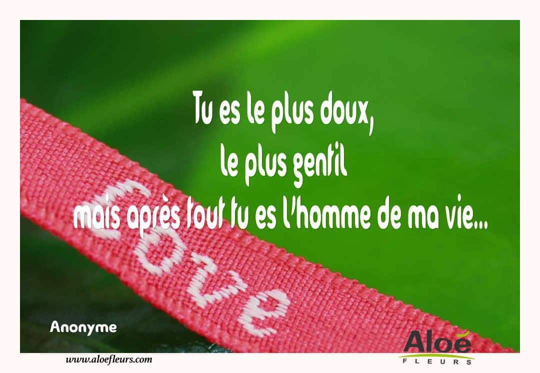 Citations D'amour Et Saint Valentin  Tu Es Le Plus Doux
