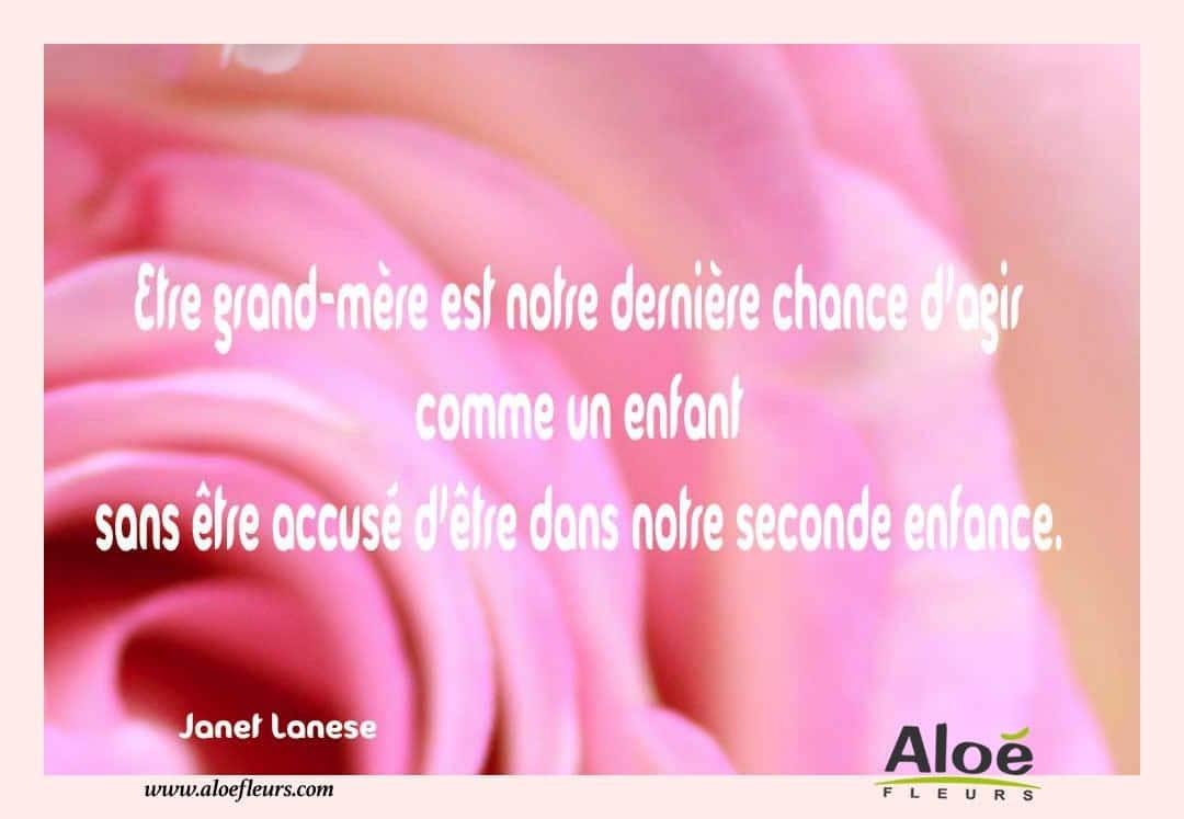 Citations messages fete des grands meres 2016 janet lanese aloe fleurs - Citation fete des meres ...