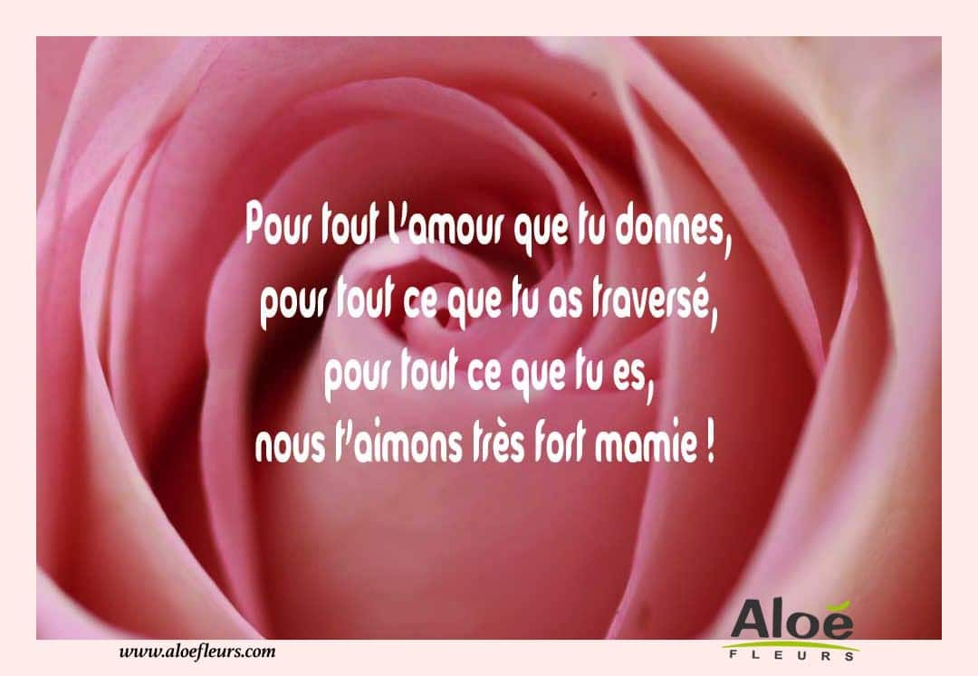 citations messages fete des grands meres 2016 amour aloe fleurs. Black Bedroom Furniture Sets. Home Design Ideas