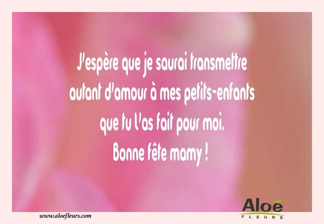 citations messages fete des grands meres 2016 j 39 esp re aloe fleurs. Black Bedroom Furniture Sets. Home Design Ideas