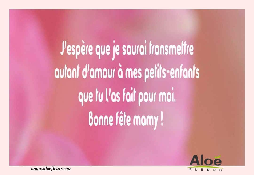 Citations messages fete des grands meres 2016 aloefleurs - Fete des grand meres 2015 ...