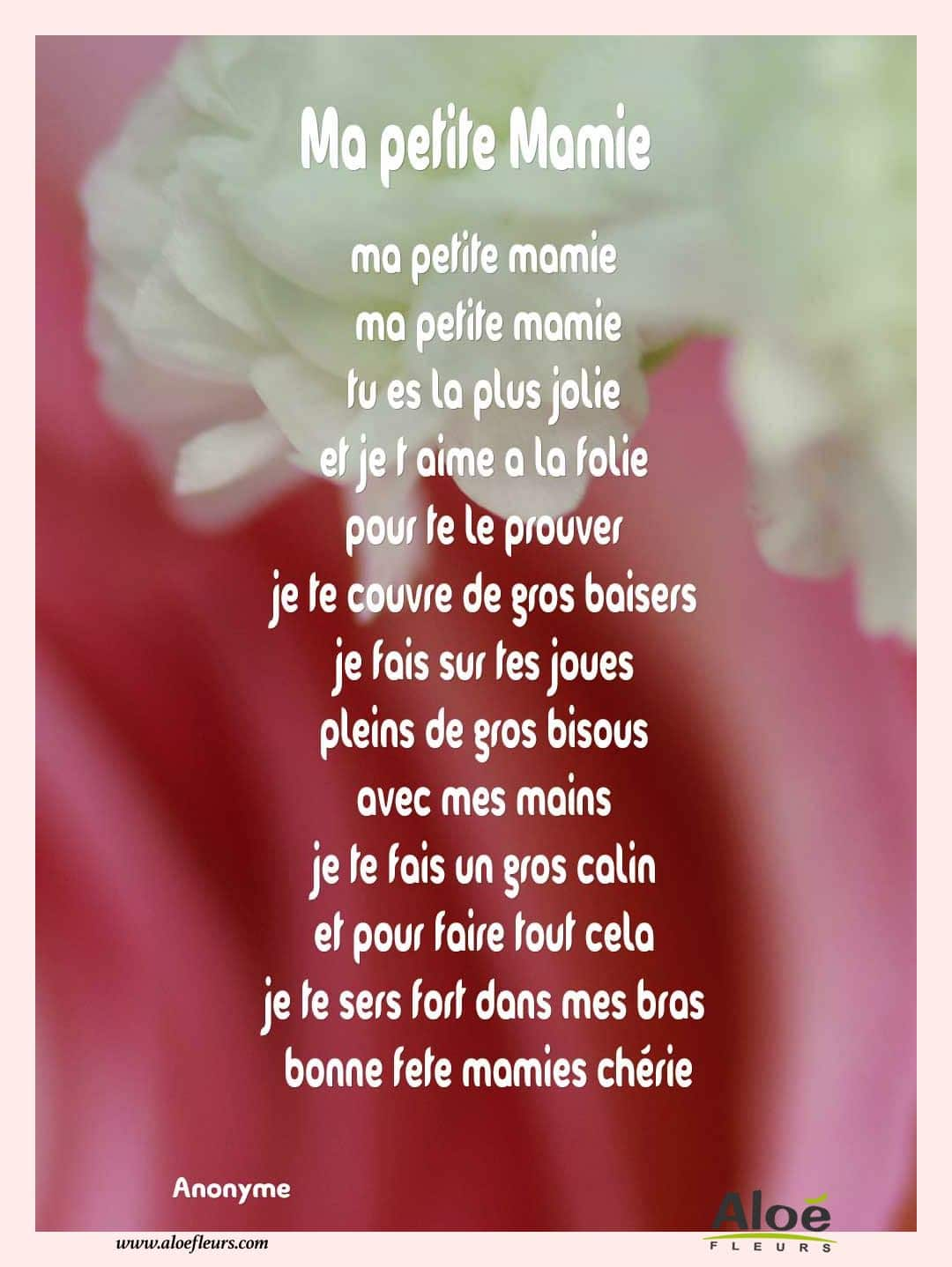 Poemes pour la fete des meres la fete des meres pictures to pin on green home - Fleur fete des meres ...