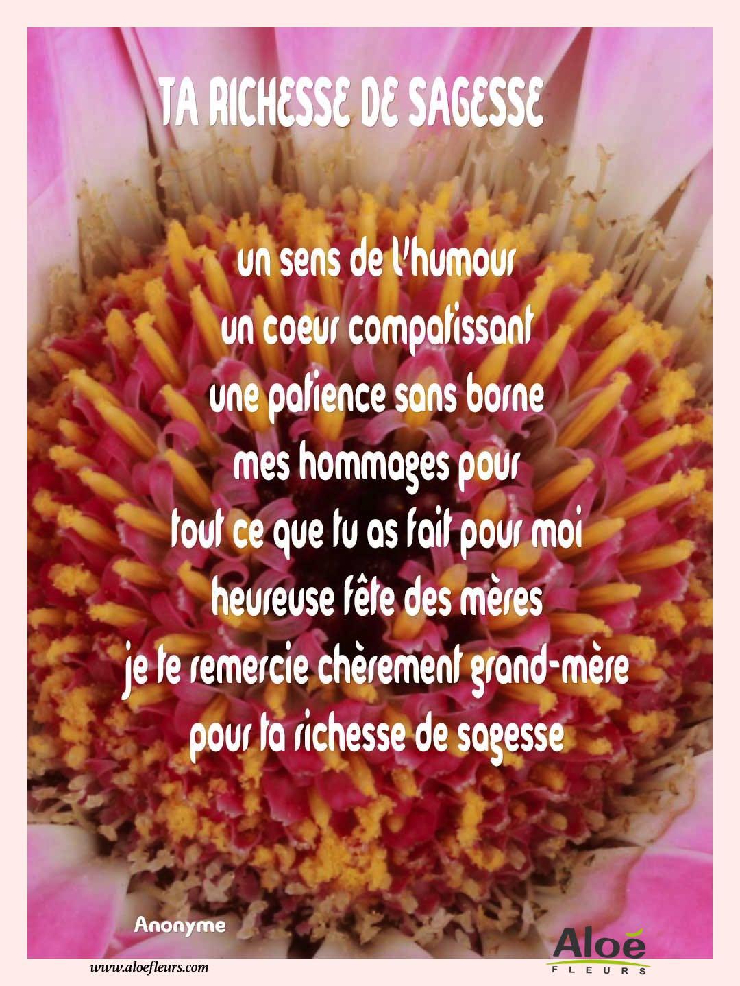 Préférence poemes fete des grands-meres 2016 aloefleurs.com - TA-RICHESSE-DE  RF05