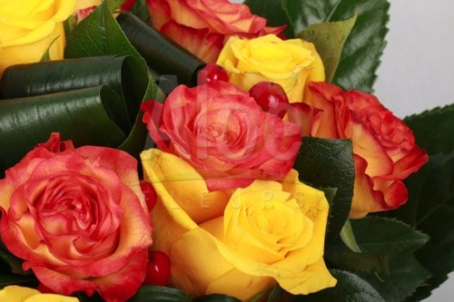 Bouquet Rose Orange & Jaune 500  9