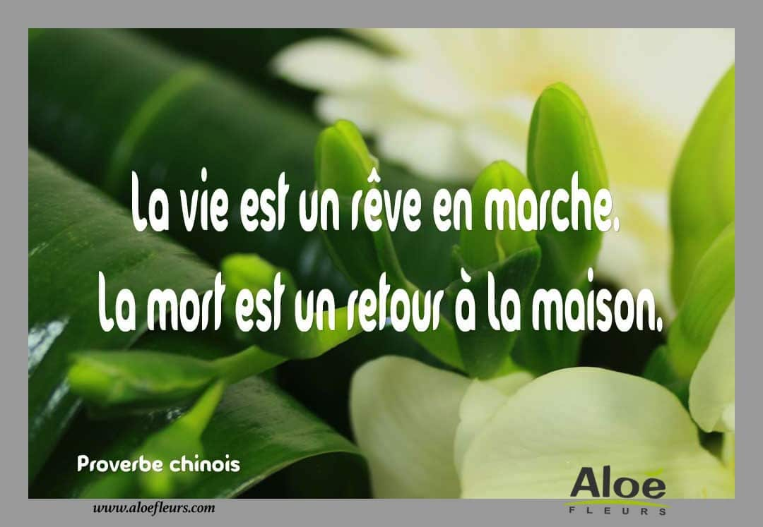 Citation Poème DeuilProverbe Chinois