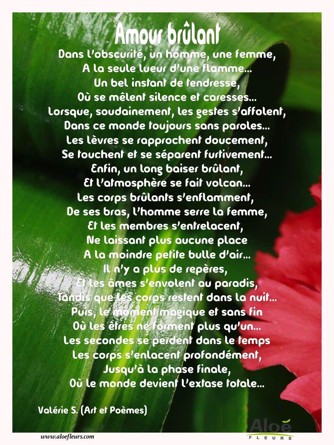 Citations D'amour Et Saint Valentin  Amour Brûlant