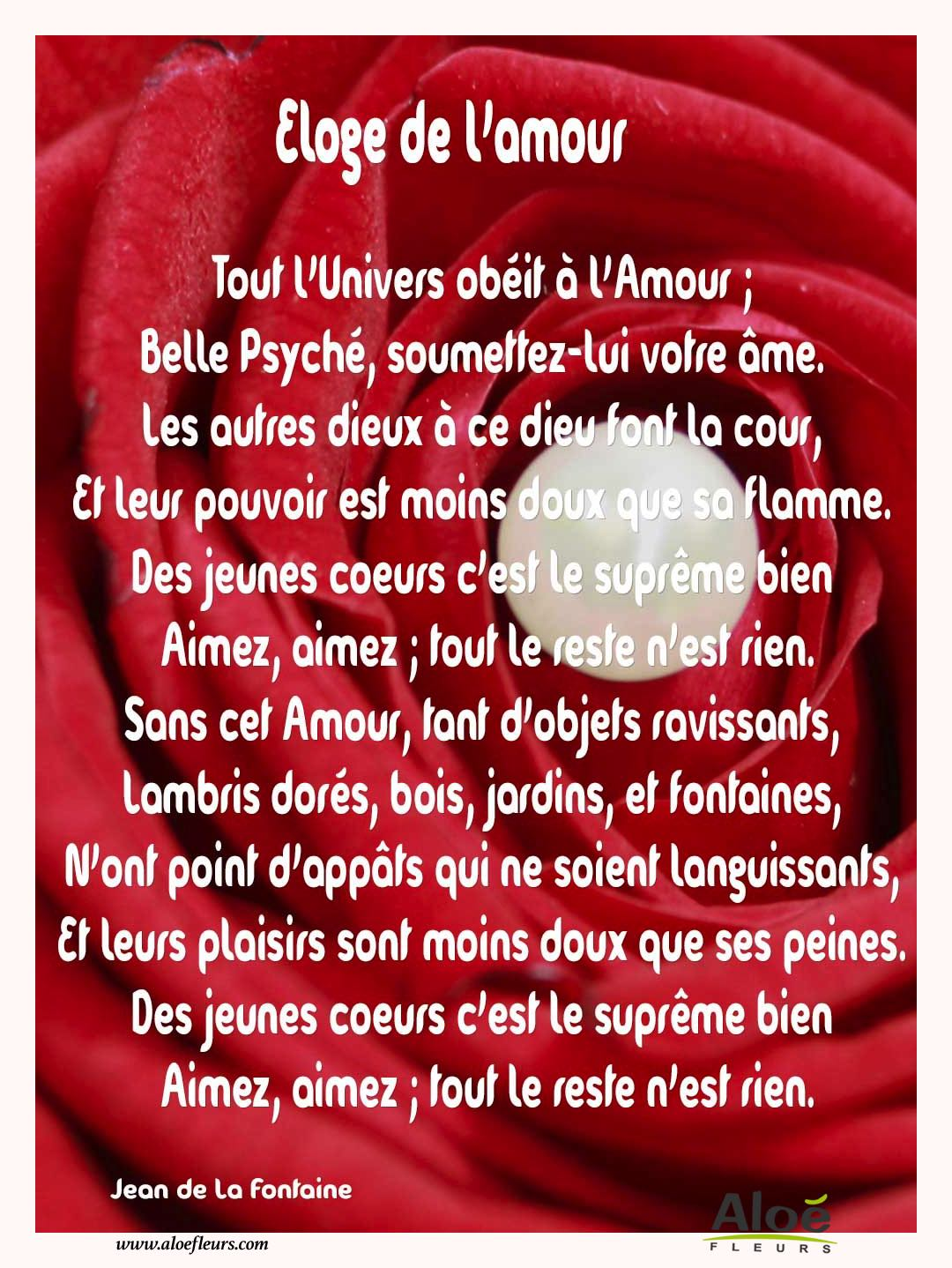 Citations D'amour Et Saint Valentin  Eloge De L'amour