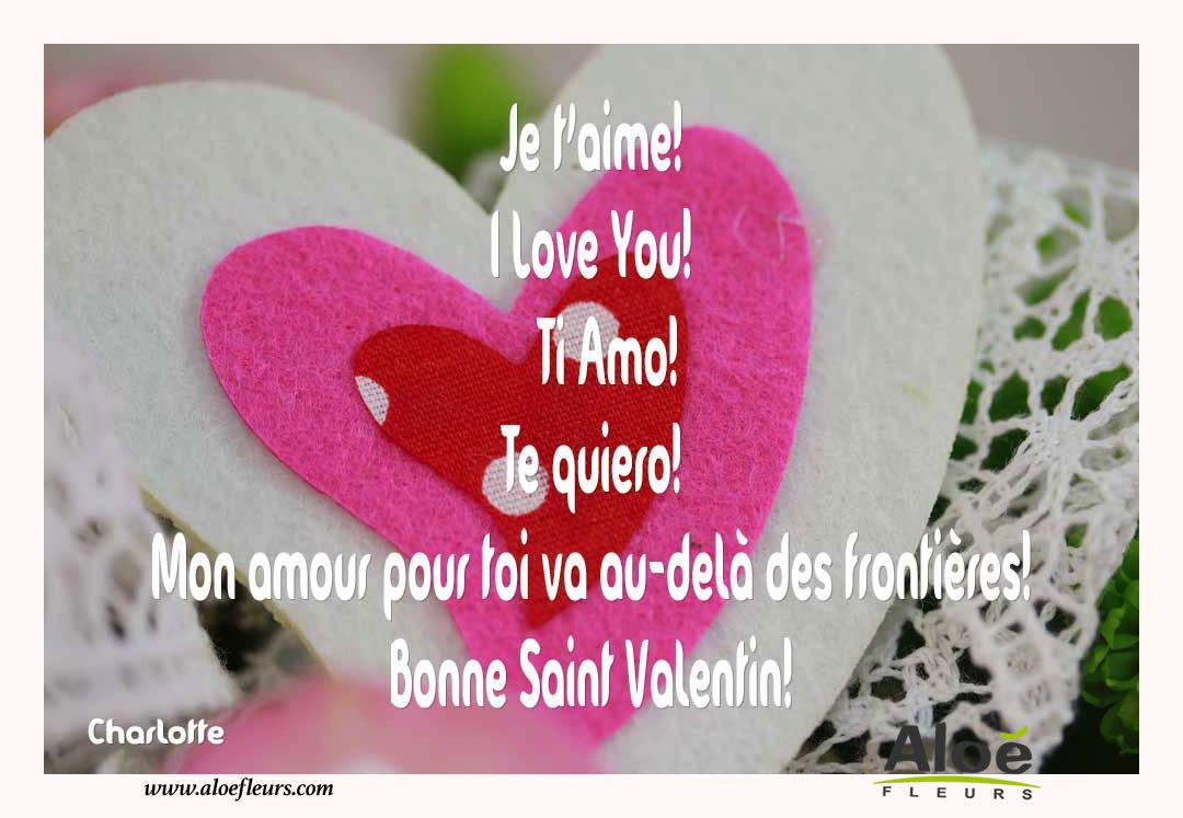 Citations D'amour Et Saint Valentin  Je T'aime! I Love You!  Ti Amo