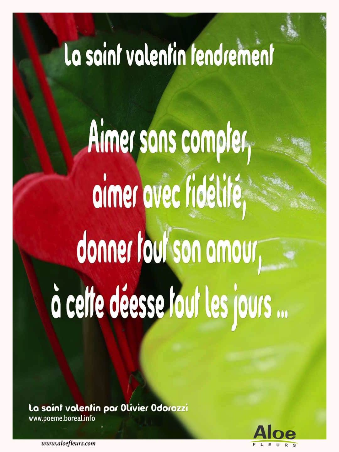 Citations D'amour Et Saint Valentin  La Saint Valentin Tendrement