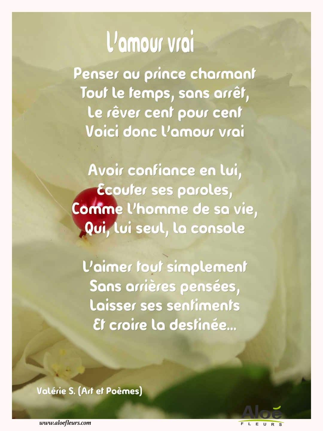 Citations D'amour Et Saint Valentin  L'amour Vrai