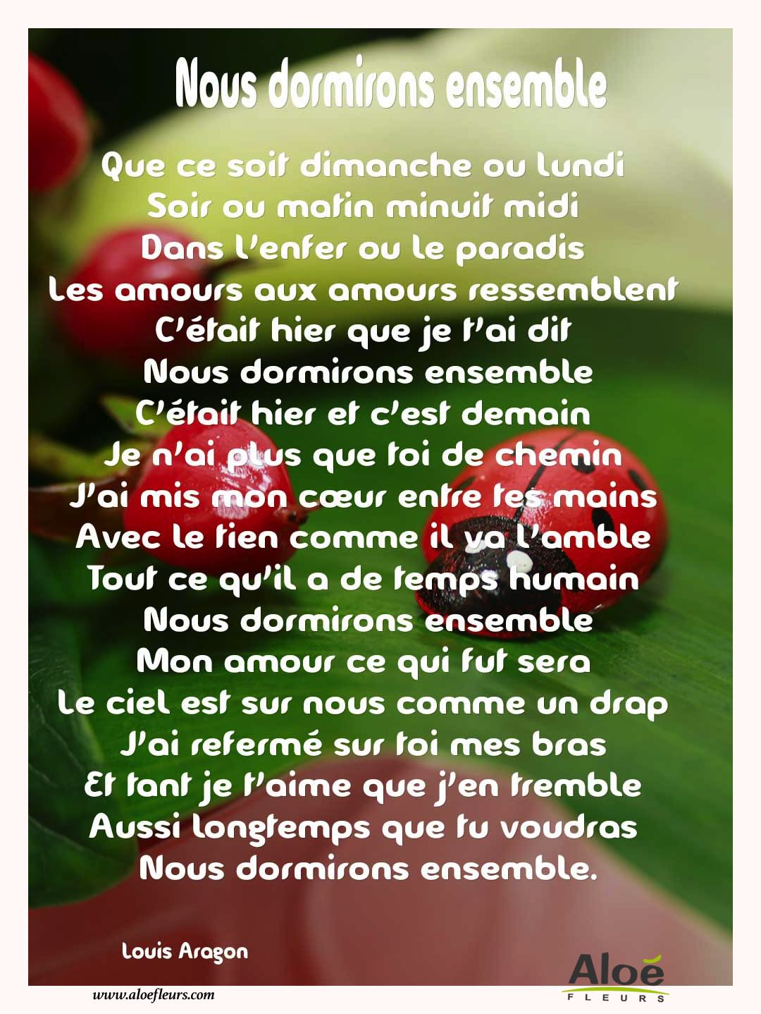 Citations D'amour Et Saint Valentin  Nous Dormirons Ensemble 2