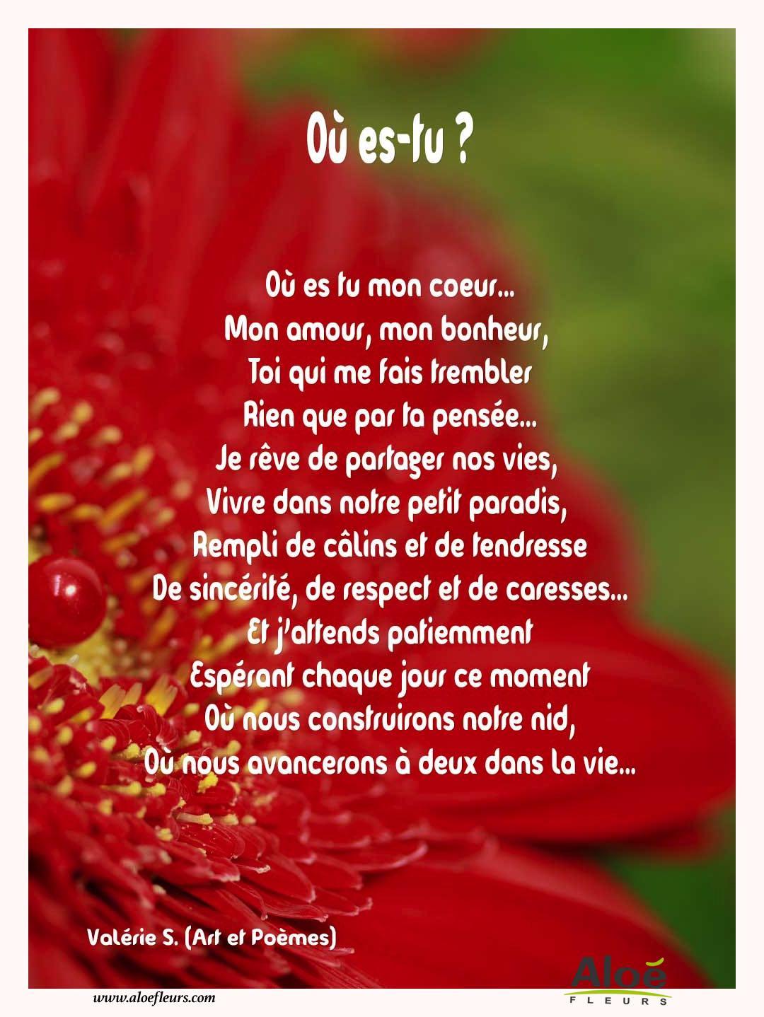 Citation Sur La Tendresse Les Calins Webwinkelbundel