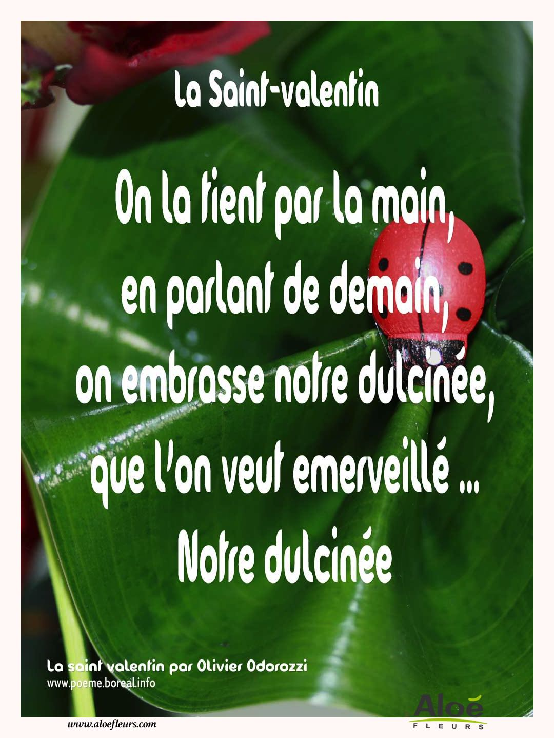 Citations D'amour Et Saint Valentin  On La Tient Par La Main