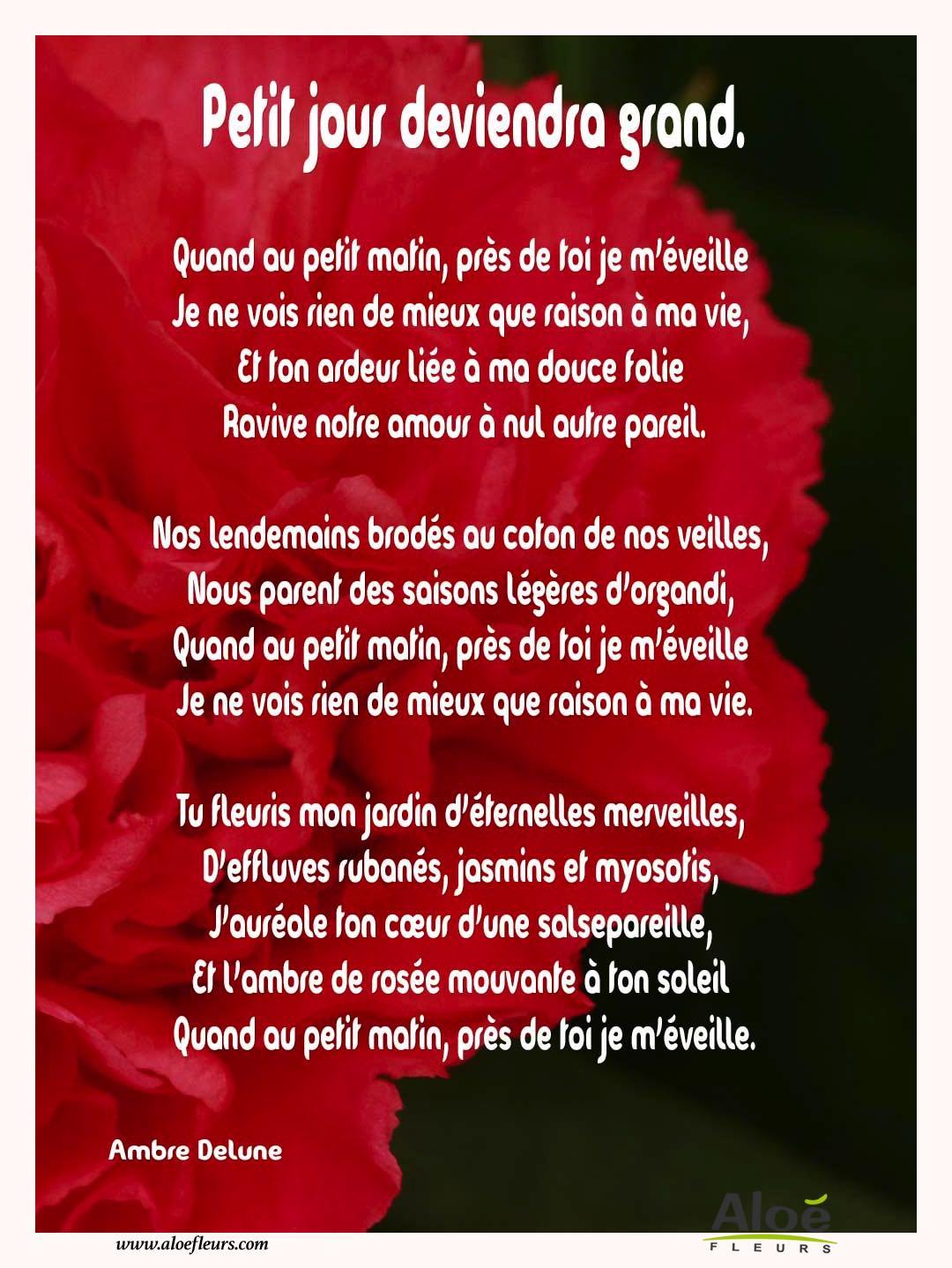 Les Poèmes De Fleurs En Images Par Aloé Fleurs