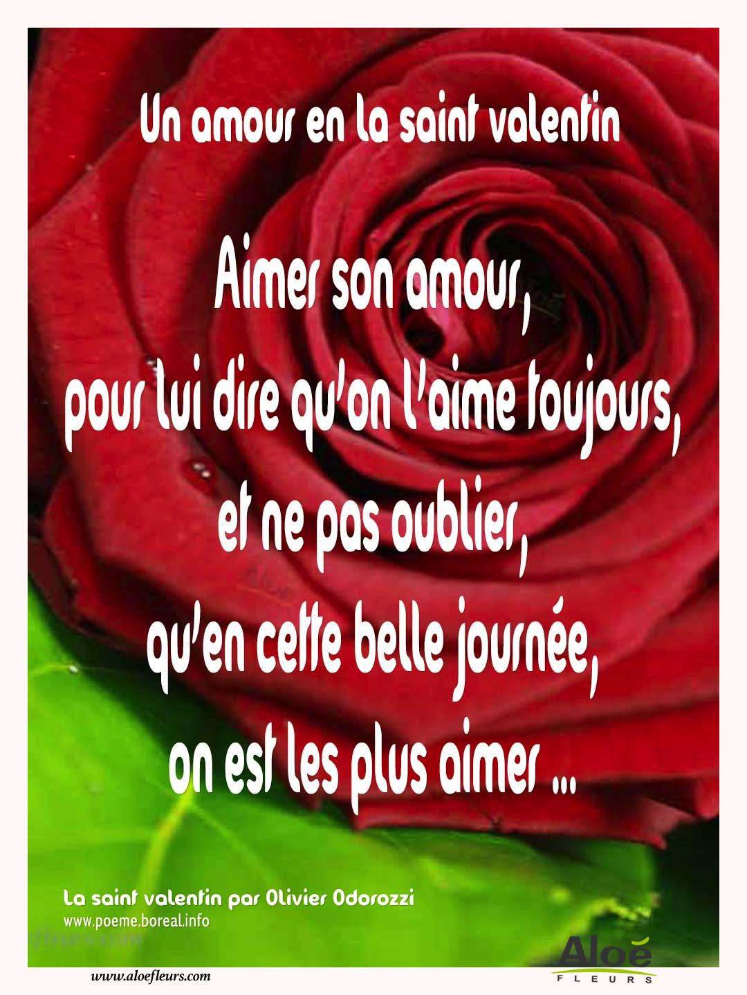 Citations D'amour Et Saint Valentin  Un Amour En La Saint Valentin