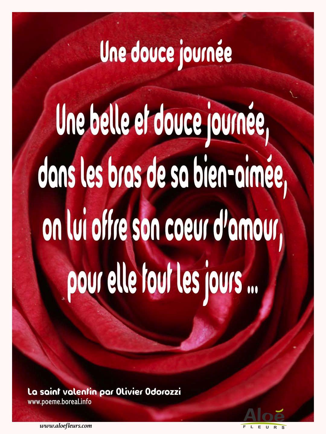 Citations D Amour Et Saint Valentin Une Douce Journée Aloe