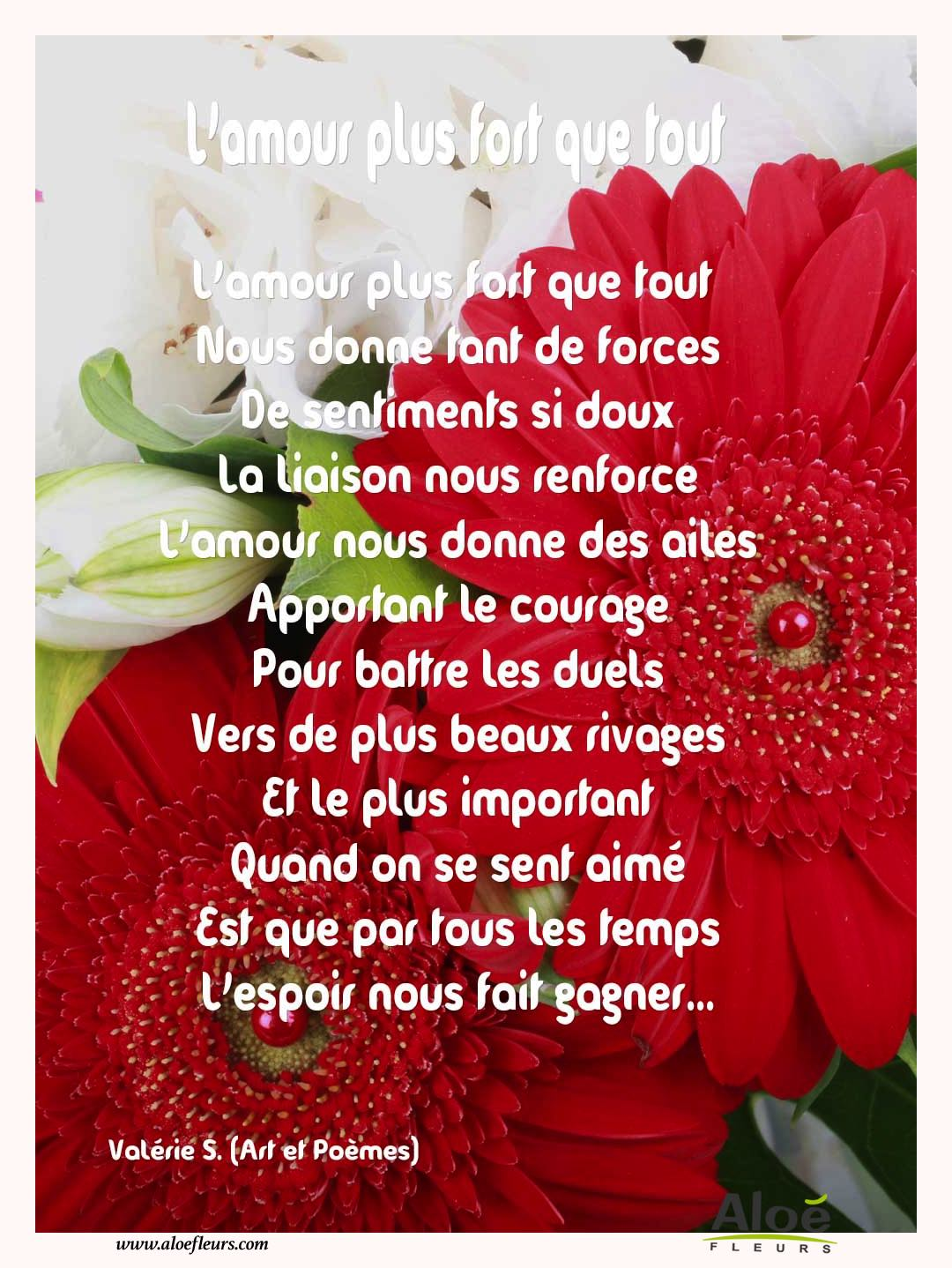 Citations D'amour Et Saint Valentin    L'amour Plus Fort Que Tout