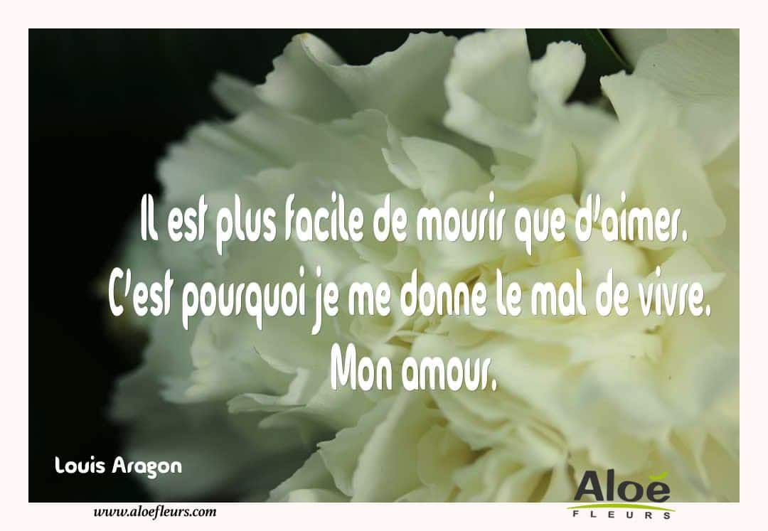 Citations D'amour Et Saint Valentin  Il Est Plus Facile