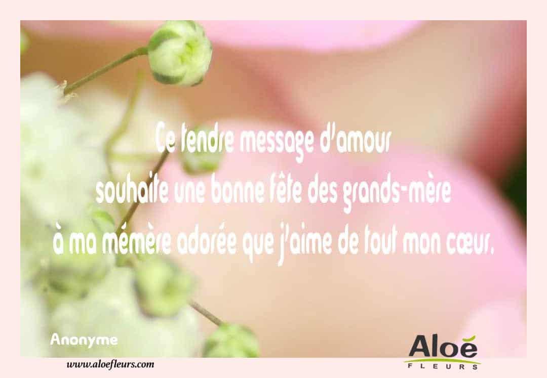 Citations Messages Fete Des Grands Meres 2016 Aloefleurscom